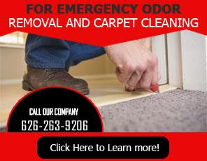 Stain Removal Company - Carpet Cleaning Altadena, CA